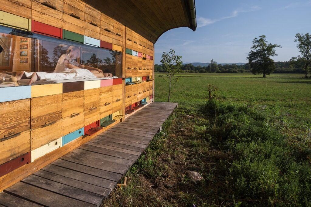 bijen in Sovenie